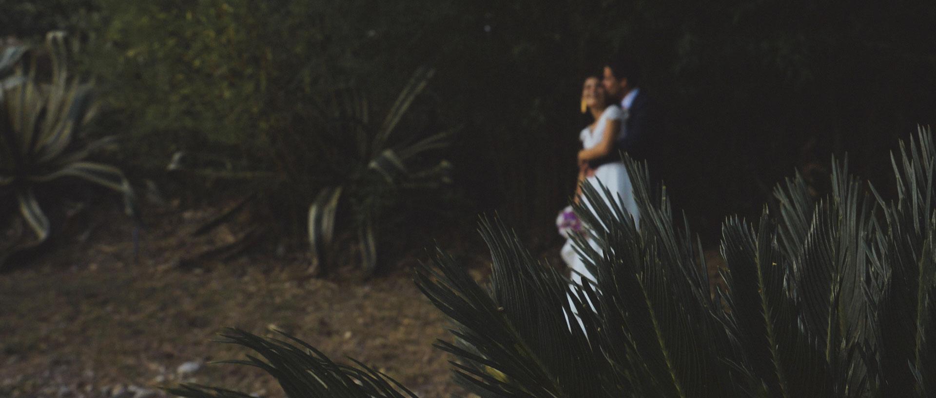Sónia & Diogo - Wedding